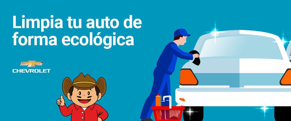 Limpia tu auto de forma ecológica